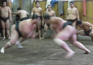 相撲_朝稽古